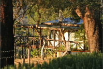 boronia-cottage2
