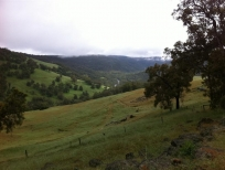 river-valley-medium