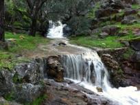 waterfall-medium